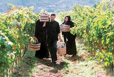 Rezultat slika za manastir tvrdos vina